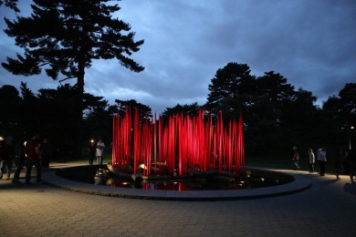chihuly (101)