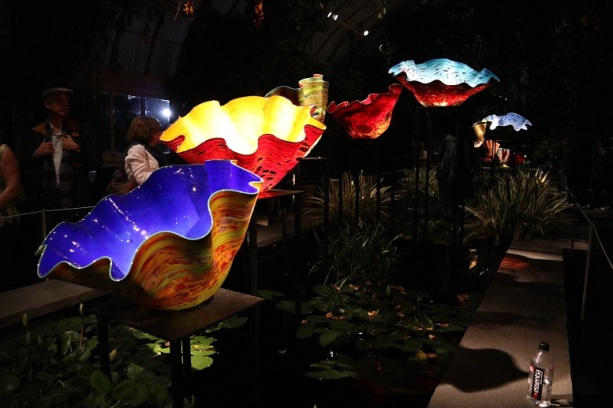 chihuly (55)