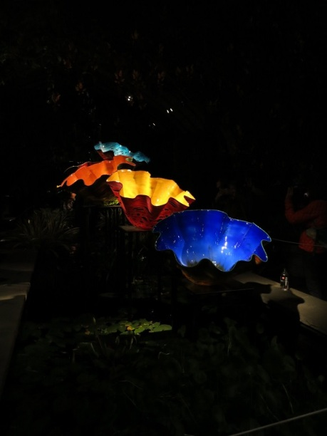chihuly (82)