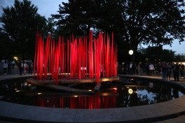 chihuly (89)