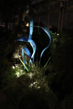 chihuly (91)