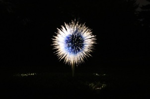 chihuly (95)