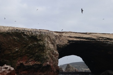 paracas (11)