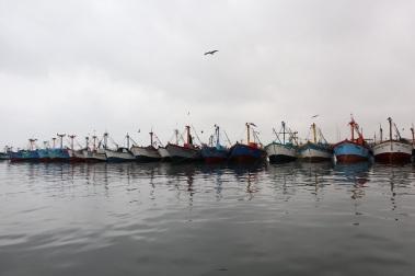 paracas (2)