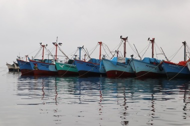 paracas (4)