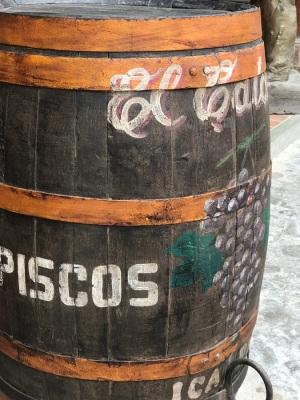 paracas (41)
