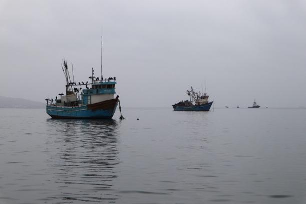 paracas (5)