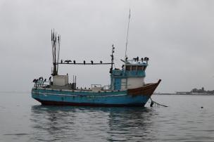 paracas (6)
