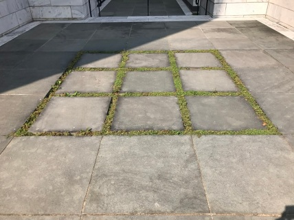 chalk (11)