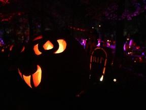 pumpkin (24)