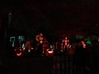 pumpkin (31)