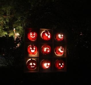 pumpkin (33)