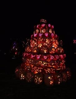 pumpkin (38)