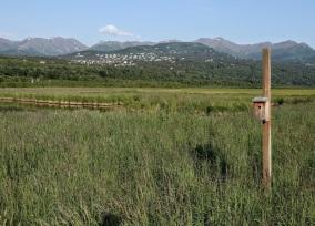 alaska blog (3)